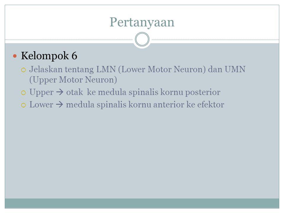 Pertanyaan Kelompok 6  Jelaskan tentang LMN (Lower Motor Neuron) dan UMN (Upper Motor Neuron)  Upper  otak ke medula spinalis kornu posterior  Lower  medula spinalis kornu anterior ke efektor