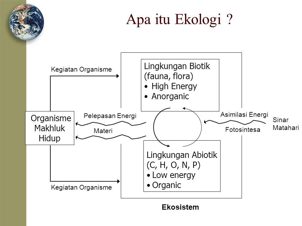 Apa itu Ekologi ? Organisme Makhluk Hidup Lingkungan Biotik (fauna, flora) High Energy Anorganic Lingkungan Abiotik (C, H, O, N, P) Low energy Organic