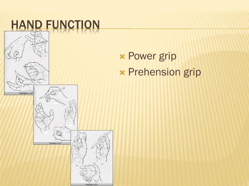  Power grip  Prehension grip