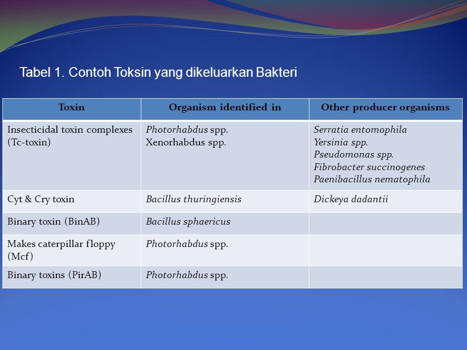 Tabel 1. Contoh Toksin yang dikeluarkan Bakteri ToxinOrganism identified inOther producer organisms Insecticidal toxin complexes (Tc-toxin) Photorhabd