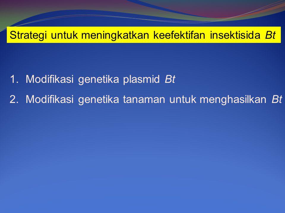 Strategi untuk meningkatkan keefektifan insektisida Bt 1.Modifikasi genetika plasmid Bt 2.Modifikasi genetika tanaman untuk menghasilkan Bt