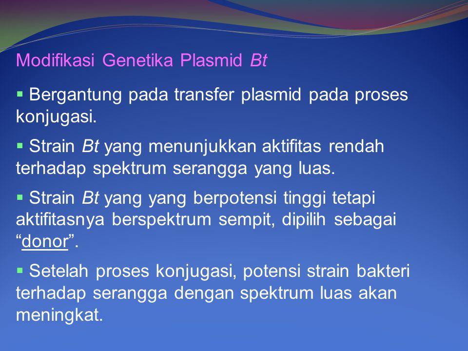 Modifikasi Genetika Plasmid Bt  Bergantung pada transfer plasmid pada proses konjugasi.