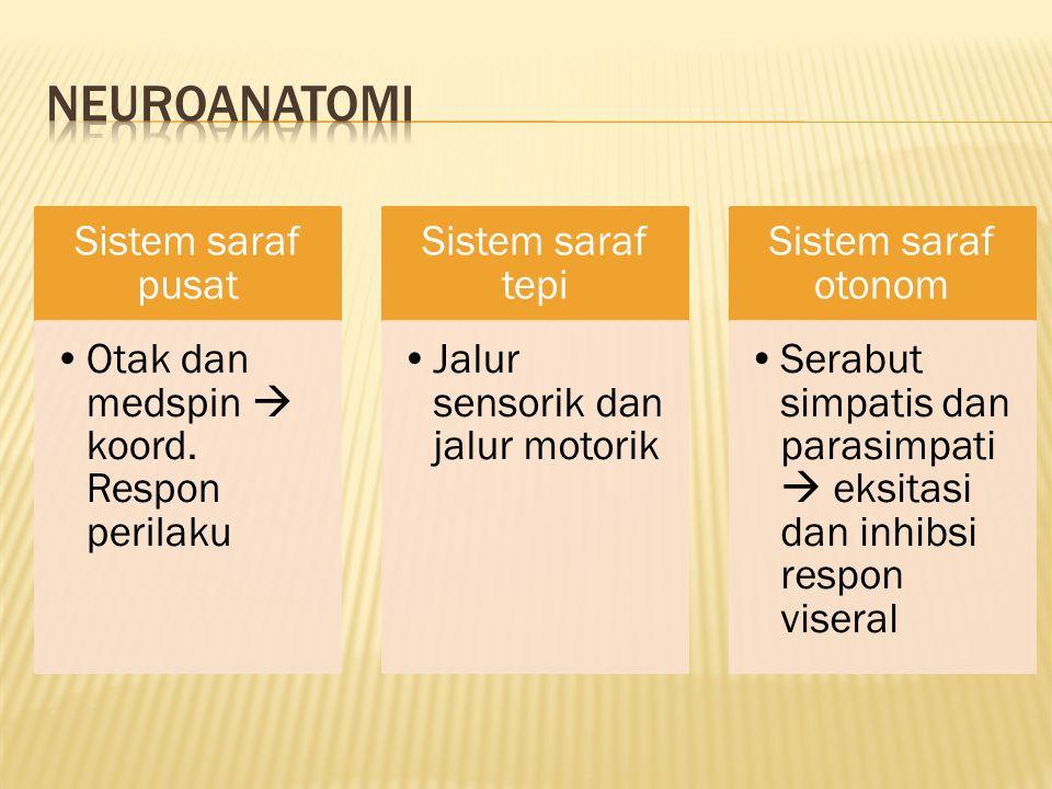 Sistem saraf pusat Otak dan medspin  koord. Respon perilaku Sistem saraf tepi Jalur sensorik dan jalur motorik Sistem saraf otonom Serabut simpatis d