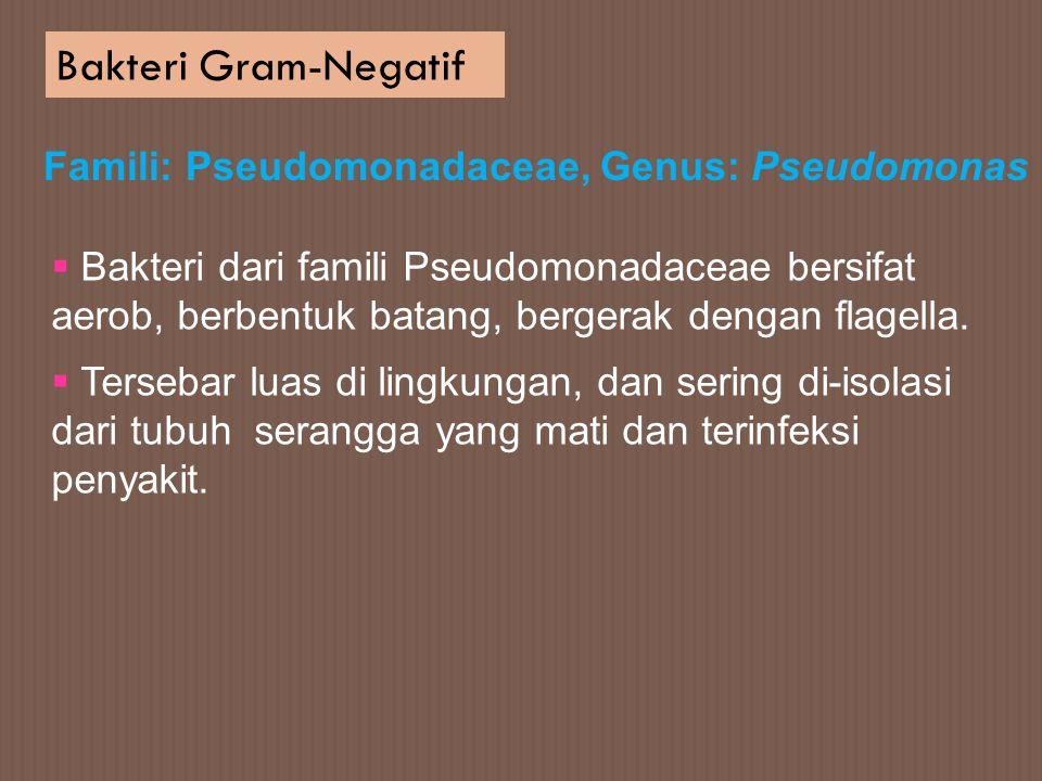 Bakteri Gram-Negatif Famili: Pseudomonadaceae, Genus: Pseudomonas  Bakteri dari famili Pseudomonadaceae bersifat aerob, berbentuk batang, bergerak de