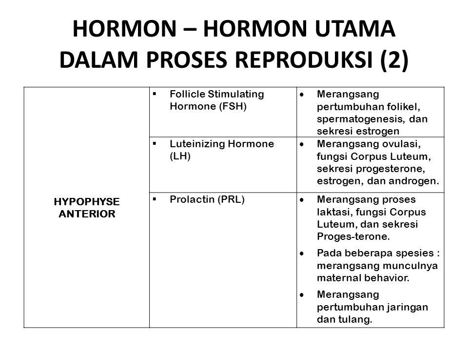 HORMON – HORMON UTAMA DALAM PROSES REPRODUKSI (2) HYPOPHYSE ANTERIOR  Follicle Stimulating Hormone (FSH)  Merangsang pertumbuhan folikel, spermatoge