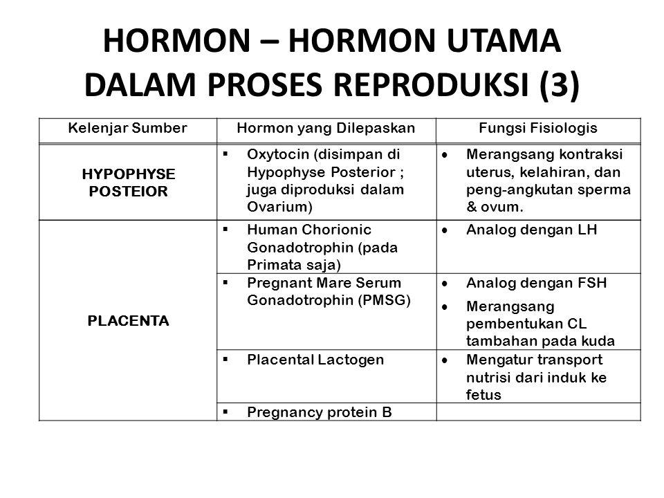 HORMON – HORMON UTAMA DALAM PROSES REPRODUKSI (3) HYPOPHYSE POSTEIOR  Oxytocin (disimpan di Hypophyse Posterior ; juga diproduksi dalam Ovarium)  Me