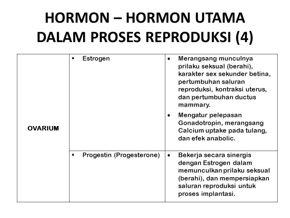 HORMON – HORMON UTAMA DALAM PROSES REPRODUKSI (4) OVARIUM  Estrogen  Merangsang munculnya prilaku seksual (berahi), karakter sex sekunder betina, pe
