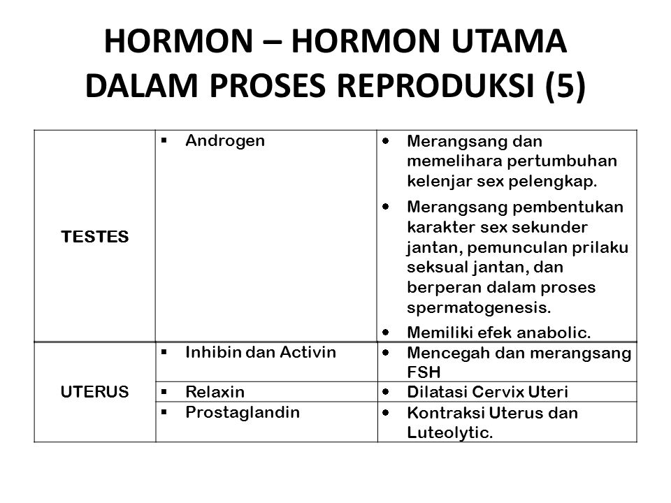 HORMON – HORMON UTAMA DALAM PROSES REPRODUKSI (5) TESTES  Androgen  Merangsang dan memelihara pertumbuhan kelenjar sex pelengkap.  Merangsang pembe