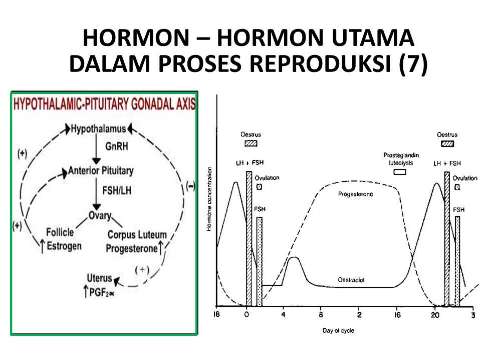 HORMON – HORMON UTAMA DALAM PROSES REPRODUKSI (7)