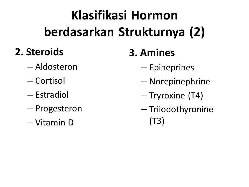Klasifikasi Hormon berdasarkan Strukturnya (2) 2. Steroids – Aldosteron – Cortisol – Estradiol – Progesteron – Vitamin D 3. Amines – Epineprines – Nor
