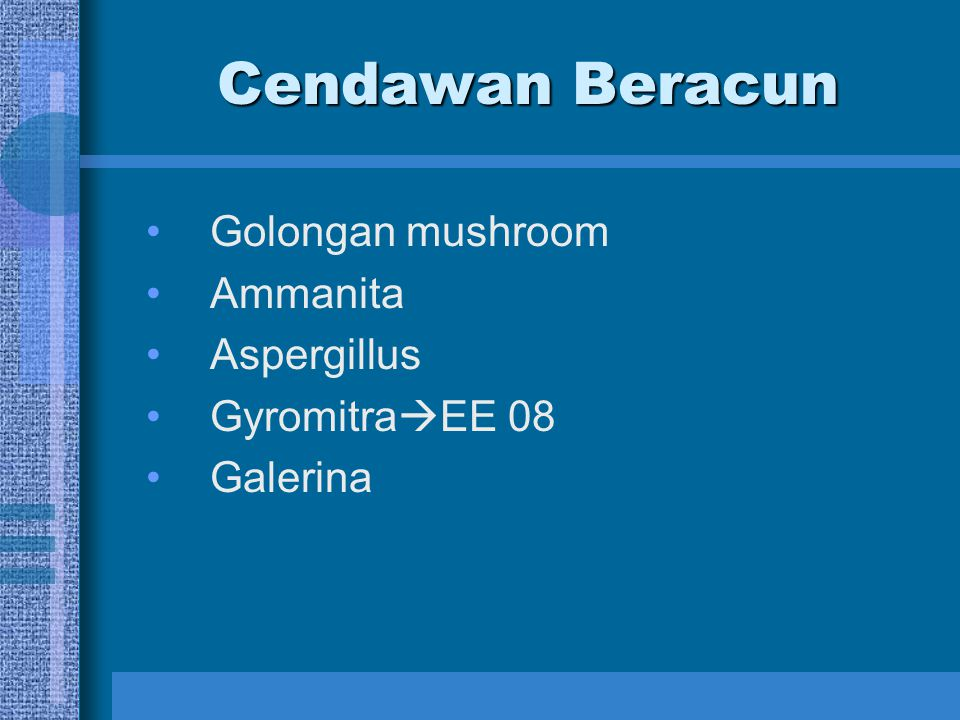 Cendawan Beracun Golongan mushroom Ammanita Aspergillus Gyromitra  EE 08 Galerina