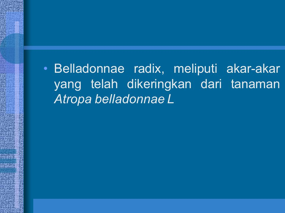 Belladonnae radix, meliputi akar-akar yang telah dikeringkan dari tanaman Atropa belladonnae L