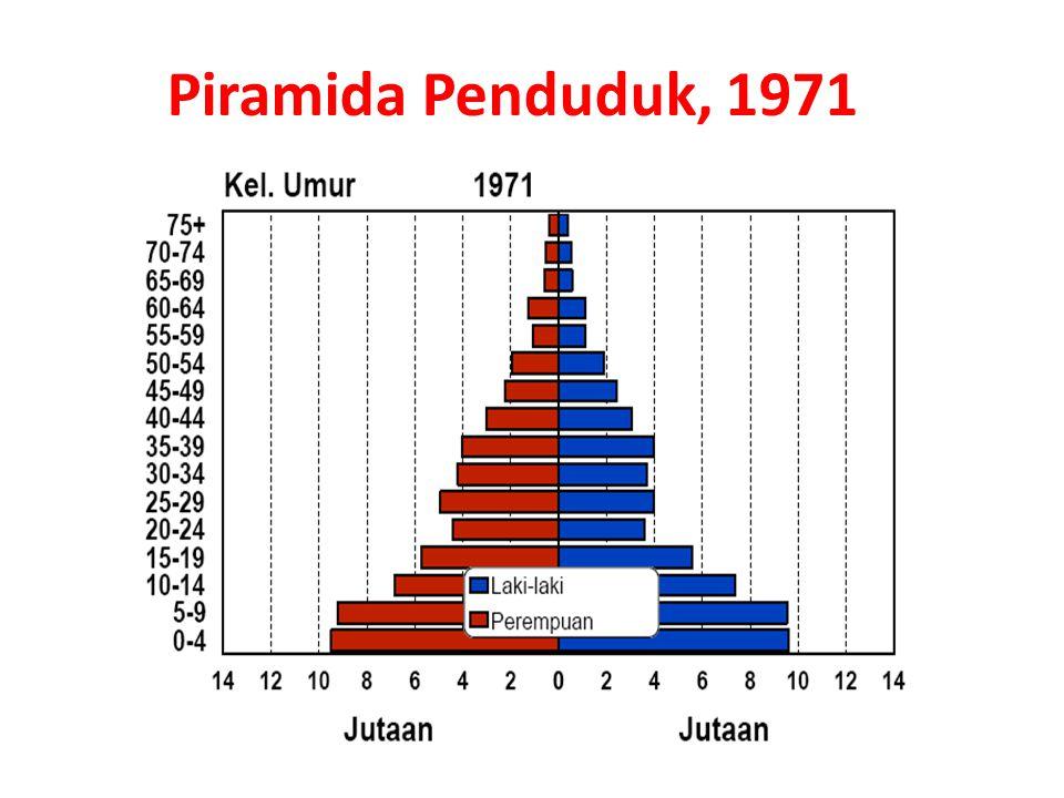 Piramida Penduduk, 1971