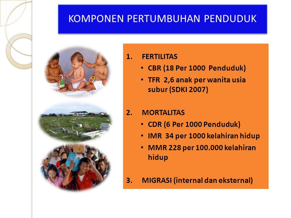 1.FERTILITAS CBR (18 Per 1000 Penduduk) TFR 2,6 anak per wanita usia subur (SDKI 2007) 2.MORTALITAS CDR (6 Per 1000 Penduduk) IMR 34 per 1000 kelahira
