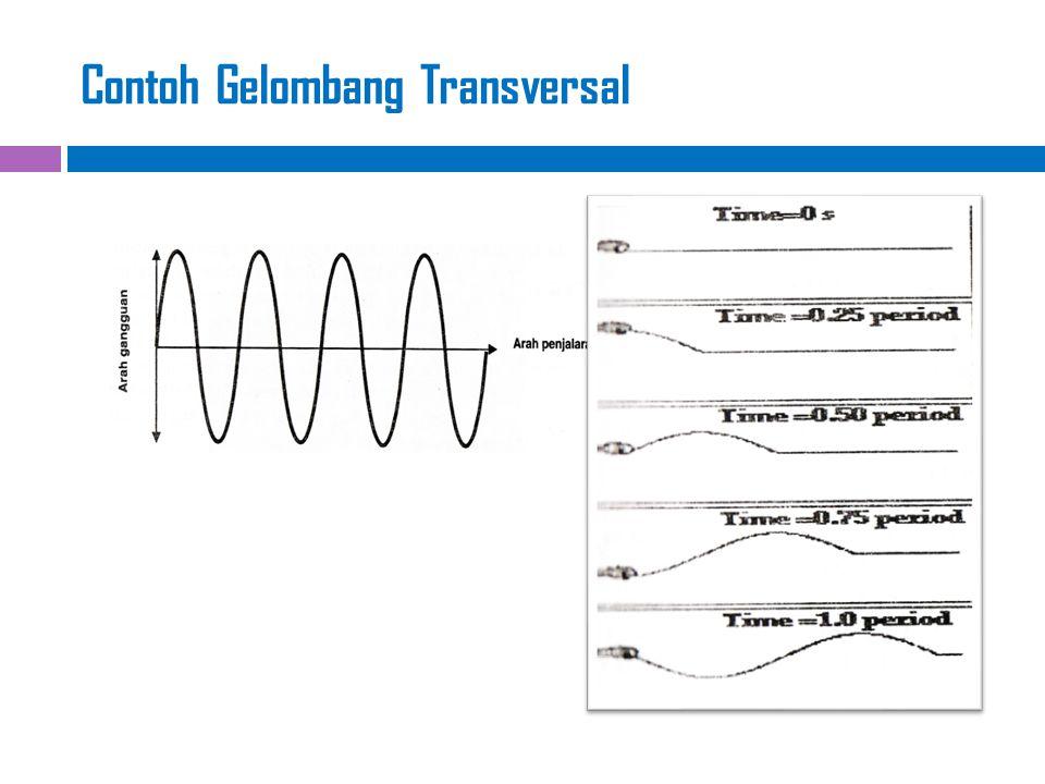 Contoh gelombang transversal: adalah salah satu jenis gelombang dalam seismik (gempa bumi) yang dikenal sebagai gelombang geser (shear wave).