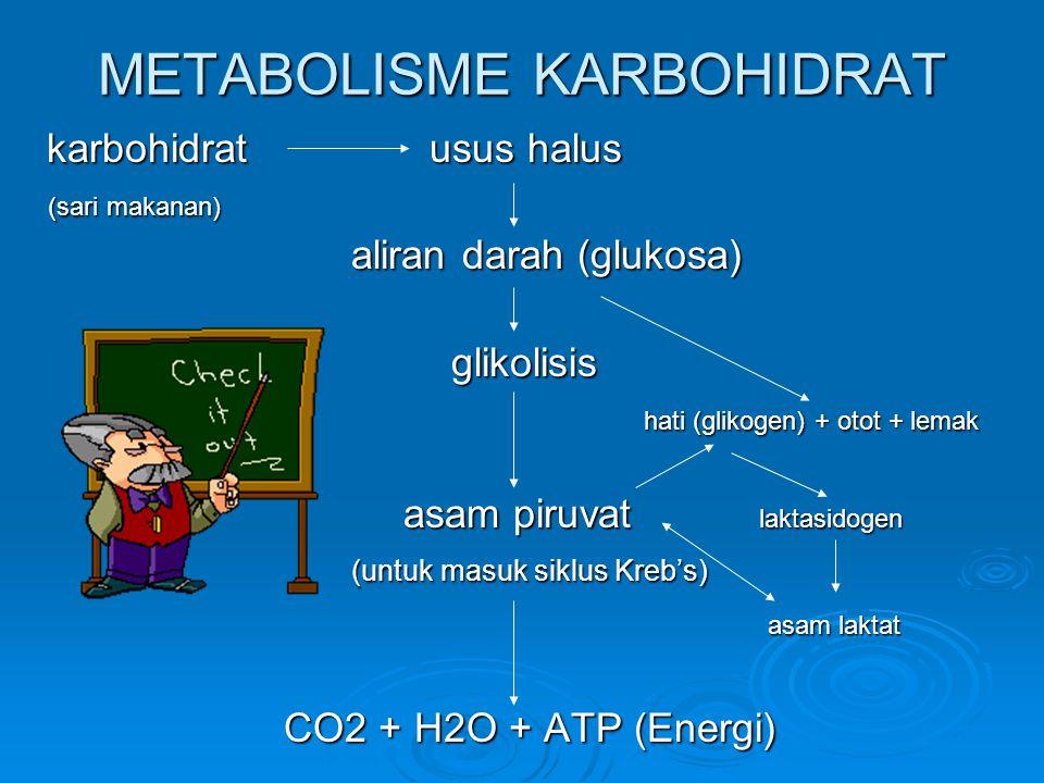HATI EMPEDU * Komposisi: air, ion-ion anorganik, musin (mucous protein), garam empedu, pigmen empedu, kolesterol, lesitin * Fungsi HATI: a.pembentukan empedu (mengandung air, garam empedu, kolesterol, pigmen empedu, garam-garam, lesitin) b.penimbunan zat makanan dari darah c.penyerapan unsur besi dari darah yang sudah rusak d.penyimpan darah e.pembentuk darah pada kehidupan janin f.