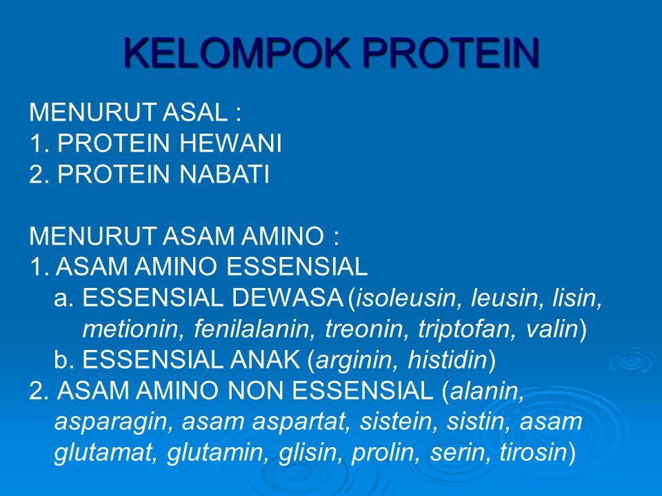 FUNGSI PROTEIN 1.mensintesis substansi penting seperti hormon, enzim, antibodi, kromosom 2.mengadakan pertumbuhan tubuh (pertumbuhan, perbaikan, pemeliharaan struktur tubuh) 3.melaksanakan metabolisme tubuh (enzim) 4.menyeimbangkan cairan tubuh dan larutan asam-basa (membantu dalam pemeliharaan tekanan yang wajar dalam sekat rongga tubuh serta sebagai sistem buffer) 5.membantu mengatur kemampuan tubuh untuk mendetoksifikasi (mengubah zat toksik menjadi non toksik) zat asing yang termakan 6.sebagai sumber energi (dalam 1 gr.