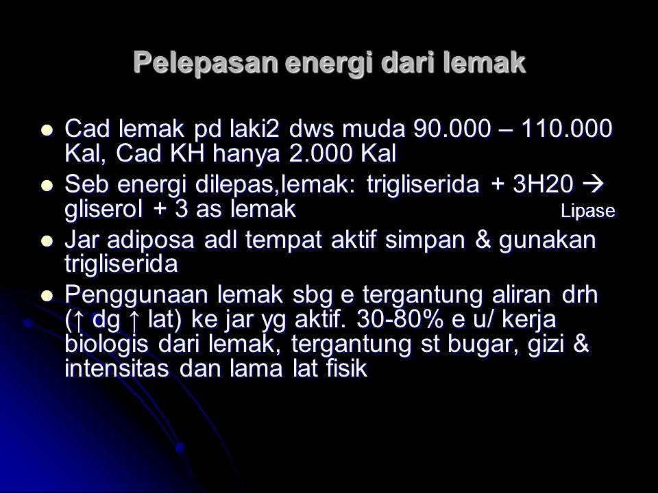 Pelepasan energi dari lemak Cad lemak pd laki2 dws muda 90.000 – 110.000 Kal, Cad KH hanya 2.000 Kal Cad lemak pd laki2 dws muda 90.000 – 110.000 Kal,