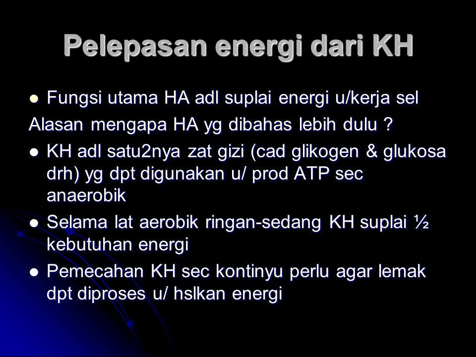 Pelepasan energi dari KH Fungsi utama HA adl suplai energi u/kerja sel Fungsi utama HA adl suplai energi u/kerja sel Alasan mengapa HA yg dibahas lebi