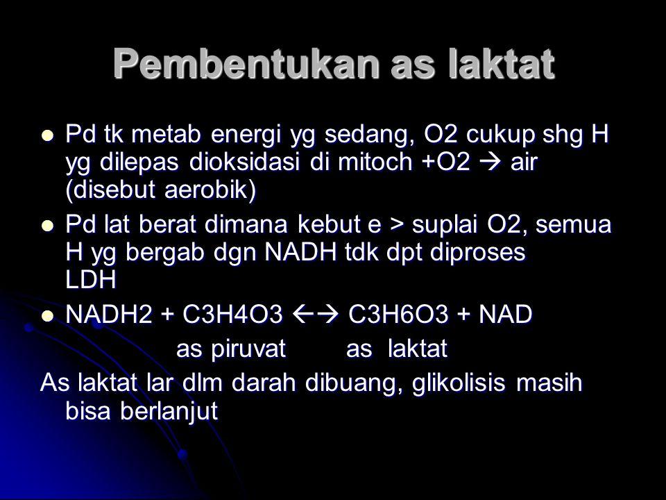 Pembentukan as laktat Pd tk metab energi yg sedang, O2 cukup shg H yg dilepas dioksidasi di mitoch +O2  air (disebut aerobik) Pd tk metab energi yg s