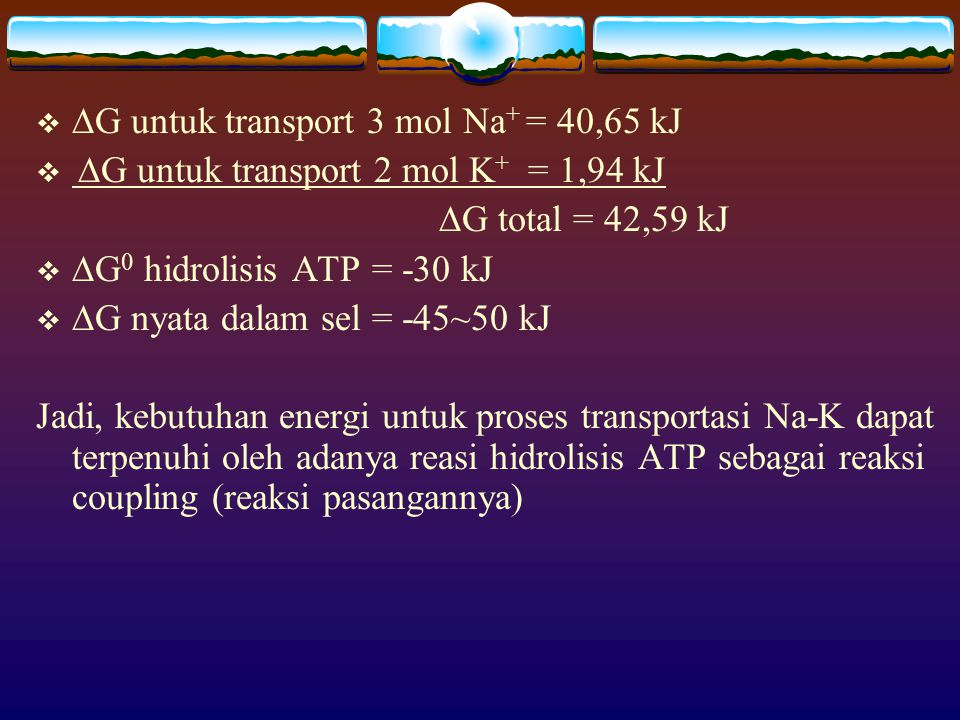   G untuk transport 3 mol Na + = 40,65 kJ   G untuk transport 2 mol K + = 1,94 kJ  G total = 42,59 kJ   G 0 hidrolisis ATP = -30 kJ   G nyata