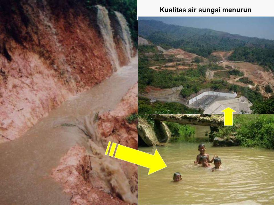 Kualitas air sungai menurun