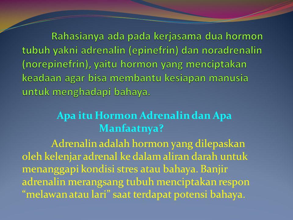 Apa itu Hormon Adrenalin dan Apa Manfaatnya? Adrenalin adalah hormon yang dilepaskan oleh kelenjar adrenal ke dalam aliran darah untuk menanggapi kond