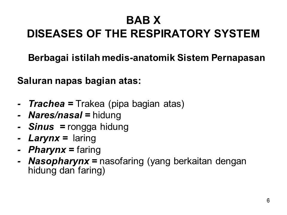 6 BAB X DISEASES OF THE RESPIRATORY SYSTEM Berbagai istilah medis-anatomik Sistem Pernapasan Saluran napas bagian atas: -Trachea = Trakea (pipa bagian