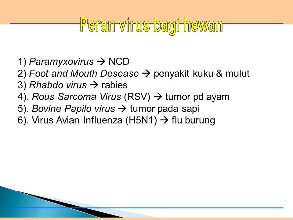 1). HIV (Human Immunodeficiency Virus)  AIDS 2). Virus ebola (ebola virus)  pertahanan tubuh 3). Virus hepatitis (Hepatitis virus)  hepatitis B 4).