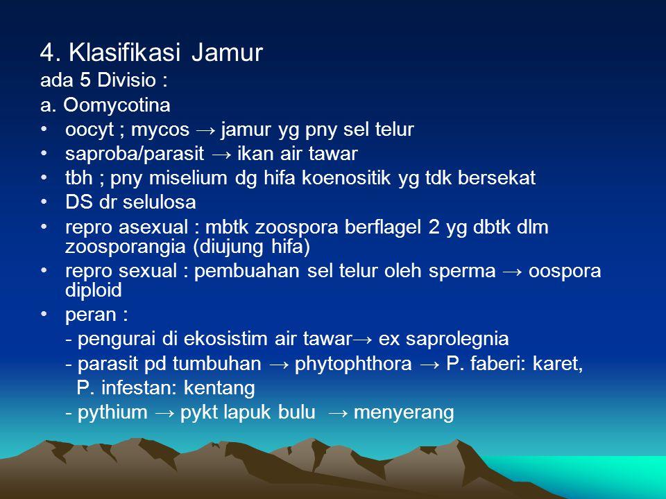 4. Klasifikasi Jamur ada 5 Divisio : a. Oomycotina oocyt ; mycos → jamur yg pny sel telur saproba/parasit → ikan air tawar tbh ; pny miselium dg hifa