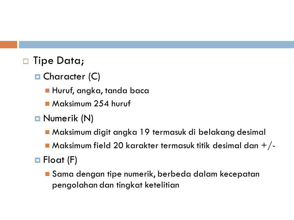 Tipe Data;  Character (C) Huruf, angka, tanda baca Maksimum 254 huruf  Numerik (N) Maksimum digit angka 19 termasuk di belakang desimal Maksimum f
