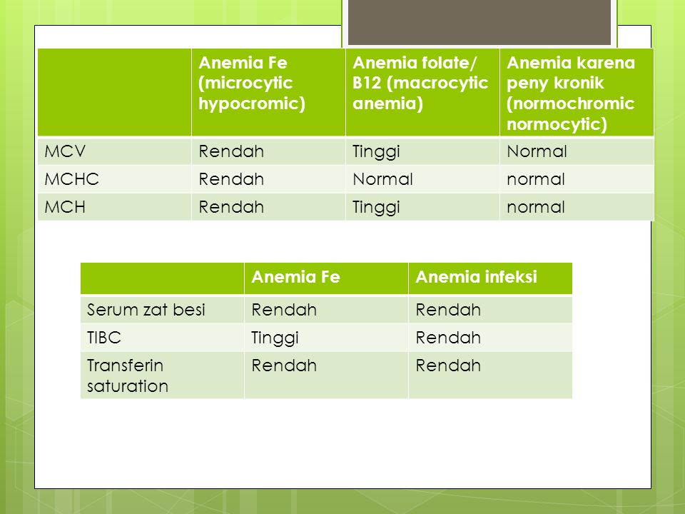 Anemia Fe (microcytic hypocromic) Anemia folate/ B12 (macrocytic anemia) Anemia karena peny kronik (normochromic normocytic) MCVRendahTinggiNormal MCH