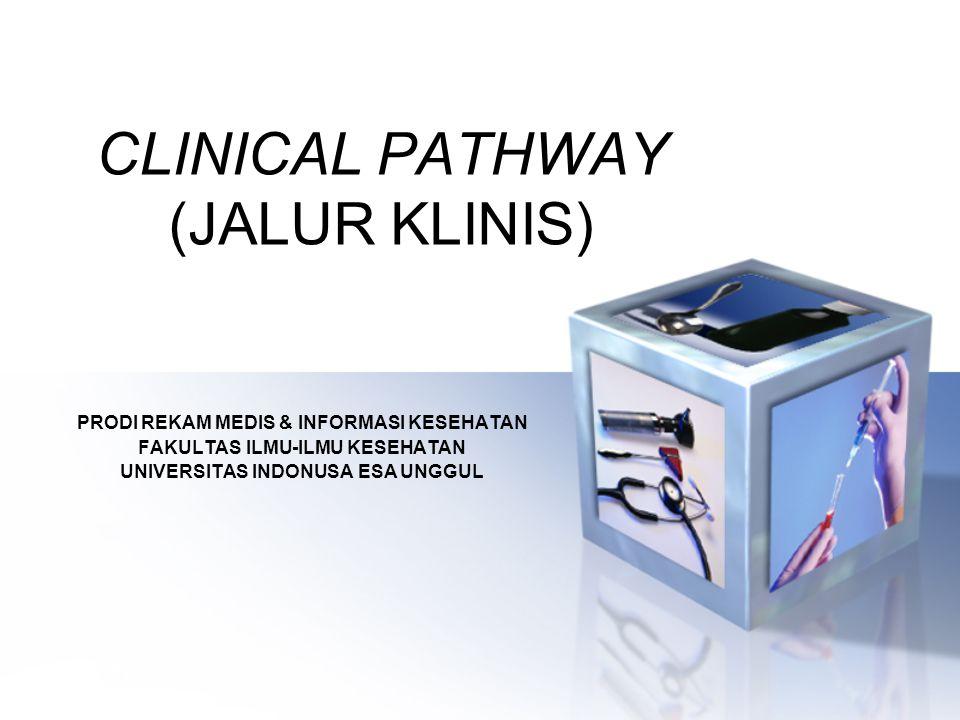 CLINICAL PATHWAY (JALUR KLINIS) PRODI REKAM MEDIS & INFORMASI KESEHATAN FAKULTAS ILMU-ILMU KESEHATAN UNIVERSITAS INDONUSA ESA UNGGUL