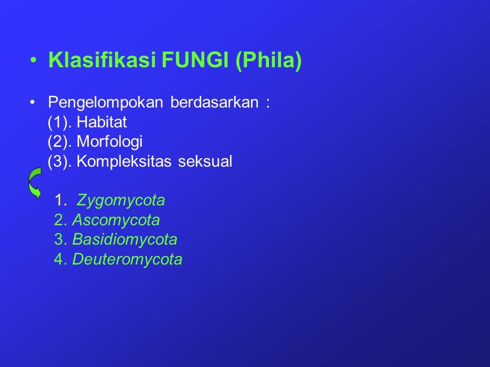 Klasifikasi FUNGI (Phila) Pengelompokan berdasarkan : (1). Habitat (2). Morfologi (3). Kompleksitas seksual 1. Zygomycota 2. Ascomycota 3. Basidiomyco