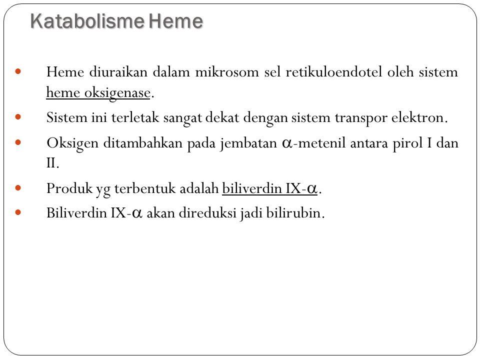 Katabolisme Heme 14 Heme diuraikan dalam mikrosom sel retikuloendotel oleh sistem heme oksigenase. Sistem ini terletak sangat dekat dengan sistem tran