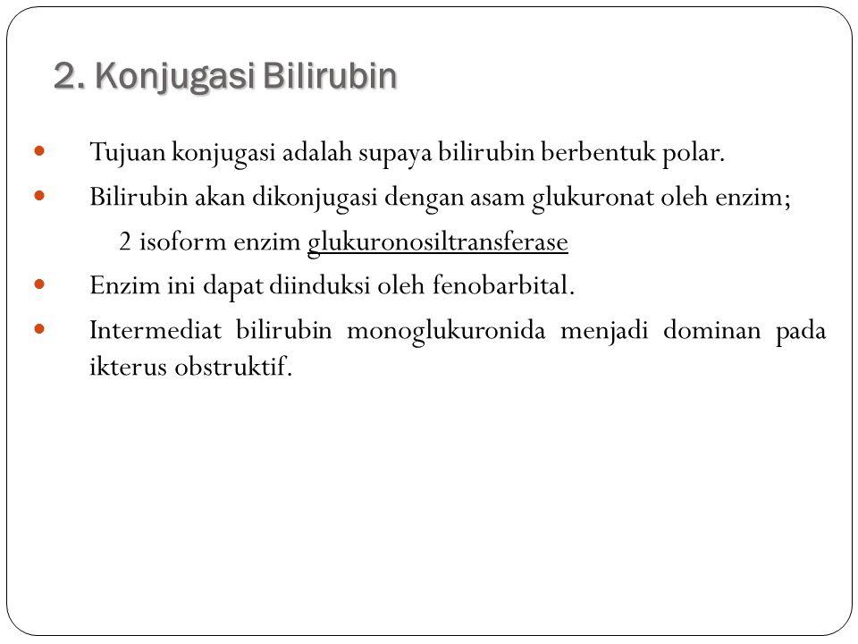 2. Konjugasi Bilirubin Tujuan konjugasi adalah supaya bilirubin berbentuk polar. Bilirubin akan dikonjugasi dengan asam glukuronat oleh enzim; 2 isofo