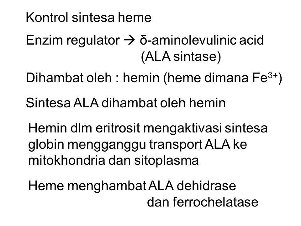 Kontrol sintesa heme Enzim regulator  δ-aminolevulinic acid (ALA sintase) Dihambat oleh : hemin (heme dimana Fe 3+ ) Sintesa ALA dihambat oleh hemin