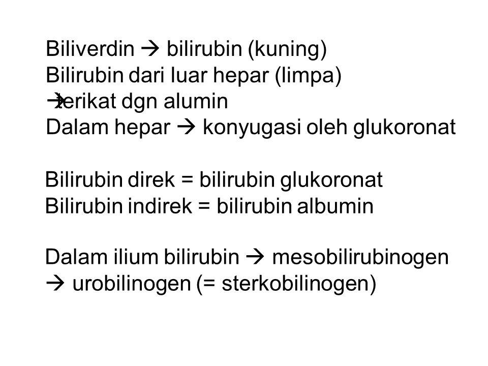 Biliverdin  bilirubin (kuning) Bilirubin dari luar hepar (limpa)  terikat dgn alumin Dalam hepar  konyugasi oleh glukoronat Bilirubin direk = bilir