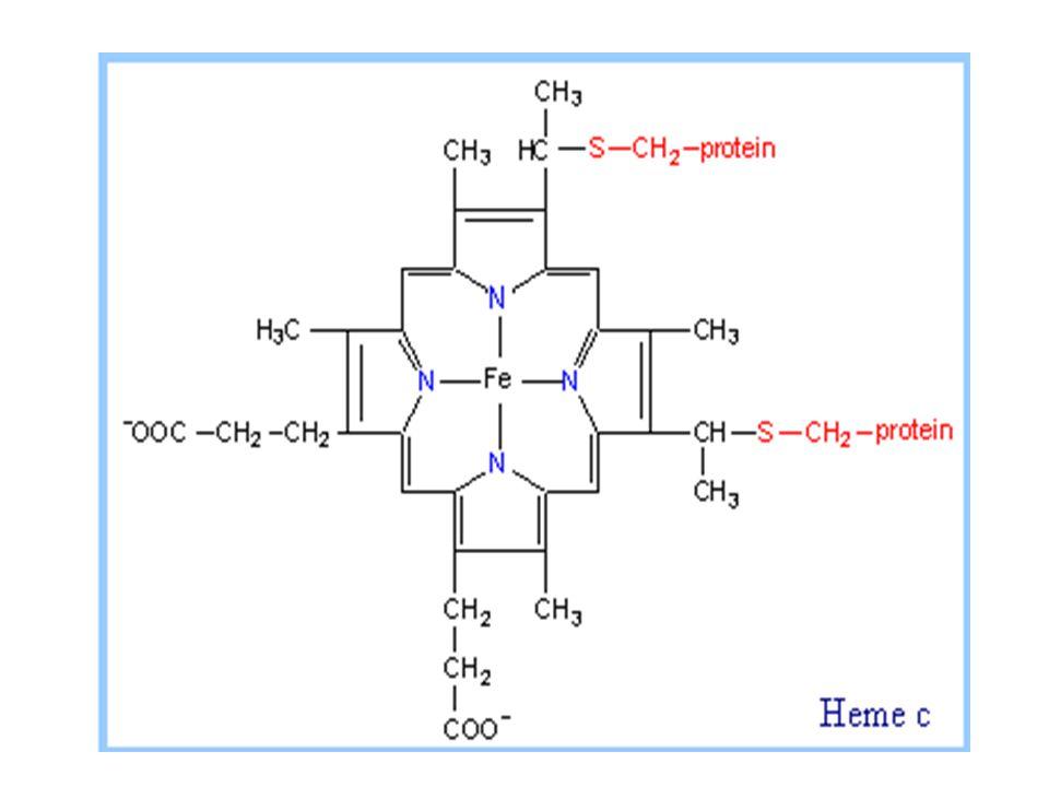 Kontrol sintesa heme Enzim regulator  δ-aminolevulinic acid (ALA sintase) Dihambat oleh : hemin (heme dimana Fe 3+ ) Sintesa ALA dihambat oleh hemin Hemin dlm eritrosit mengaktivasi sintesa globin mengganggu transport ALA ke mitokhondria dan sitoplasma Heme menghambat ALA dehidrase dan ferrochelatase