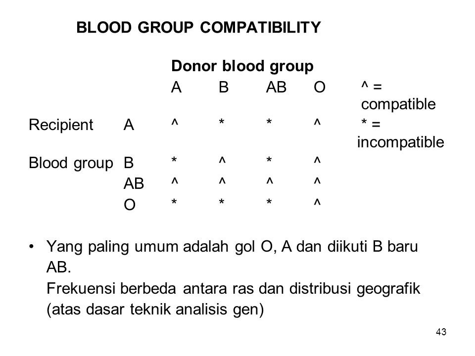 43 BLOOD GROUP COMPATIBILITY Donor blood group ABABO^ = compatible RecipientA^**^* = incompatible Blood groupB*^*^ AB^^^^ O***^ Yang paling umum adalah gol O, A dan diikuti B baru AB.