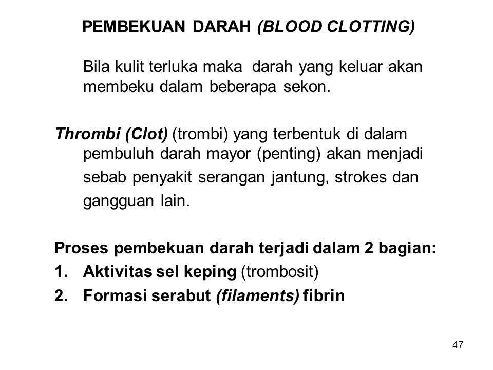 47 PEMBEKUAN DARAH (BLOOD CLOTTING) Bila kulit terluka maka darah yang keluar akan membeku dalam beberapa sekon. Thrombi (Clot) (trombi) yang terbentu
