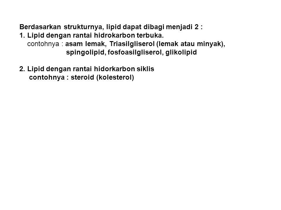 Triasilgliserol (TAG)/Lemak atau minyak