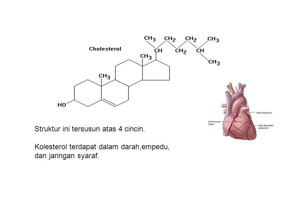 Struktur ini tersusun atas 4 cincin. Kolesterol terdapat dalam darah,empedu, dan jaringan syaraf.
