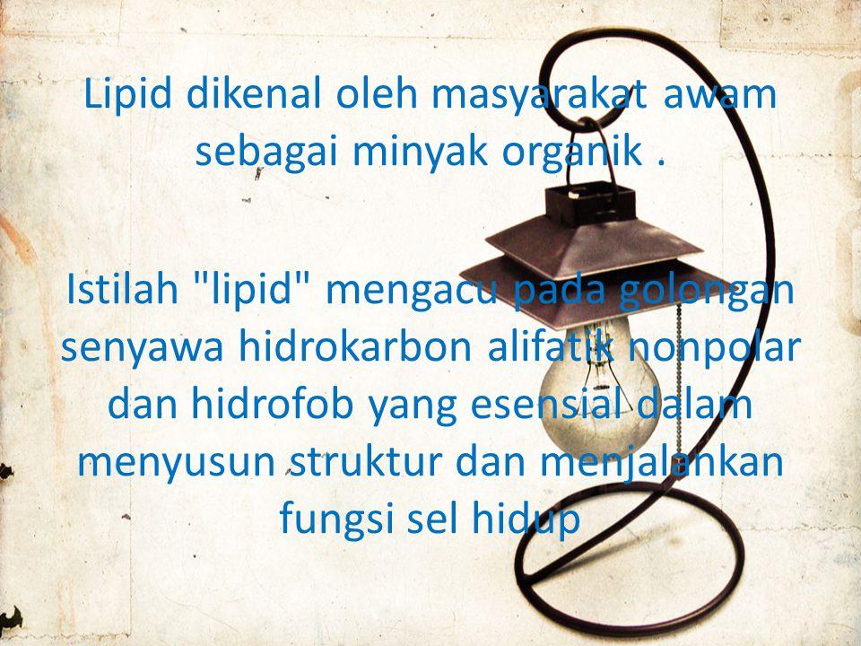 Lipid dikenal oleh masyarakat awam sebagai minyak organik.