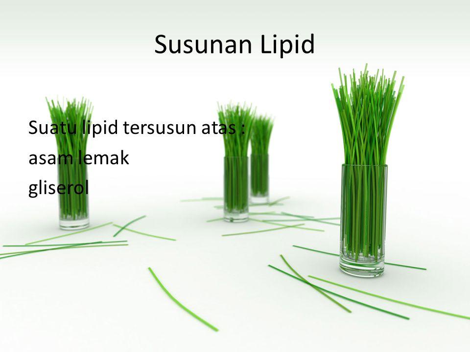 Susunan Lipid Suatu lipid tersusun atas : asam lemak gliserol