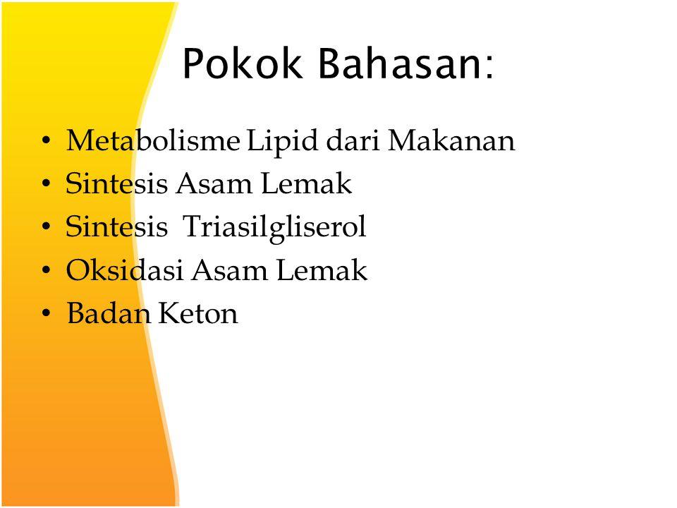 Pokok Bahasan: Metabolisme Lipid dari Makanan Sintesis Asam Lemak Sintesis Triasilgliserol Oksidasi Asam Lemak Badan Keton