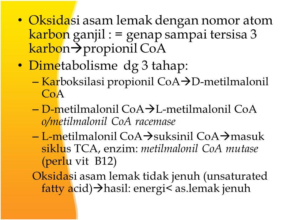 Oksidasi asam lemak dengan nomor atom karbon ganjil : = genap sampai tersisa 3 karbon  propionil CoA Dimetabolisme dg 3 tahap: – Karboksilasi propionil CoA  D-metilmalonil CoA – D-metilmalonil CoA  L-metilmalonil CoA o/metilmalonil CoA racemase – L-metilmalonil CoA  suksinil CoA  masuk siklus TCA, enzim: metilmalonil CoA mutase (perlu vit B12) Oksidasi asam lemak tidak jenuh (unsaturated fatty acid)  hasil: energi< as.lemak jenuh