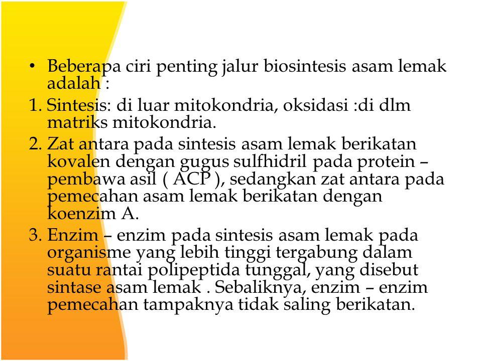 Beberapa ciri penting jalur biosintesis asam lemak adalah : 1.