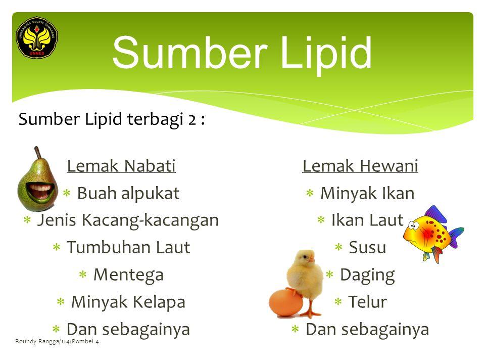 Lemak Nabati  Buah alpukat  Jenis Kacang-kacangan  Tumbuhan Laut  Mentega  Minyak Kelapa  Dan sebagainya Sumber Lipid Sumber Lipid terbagi 2 : L