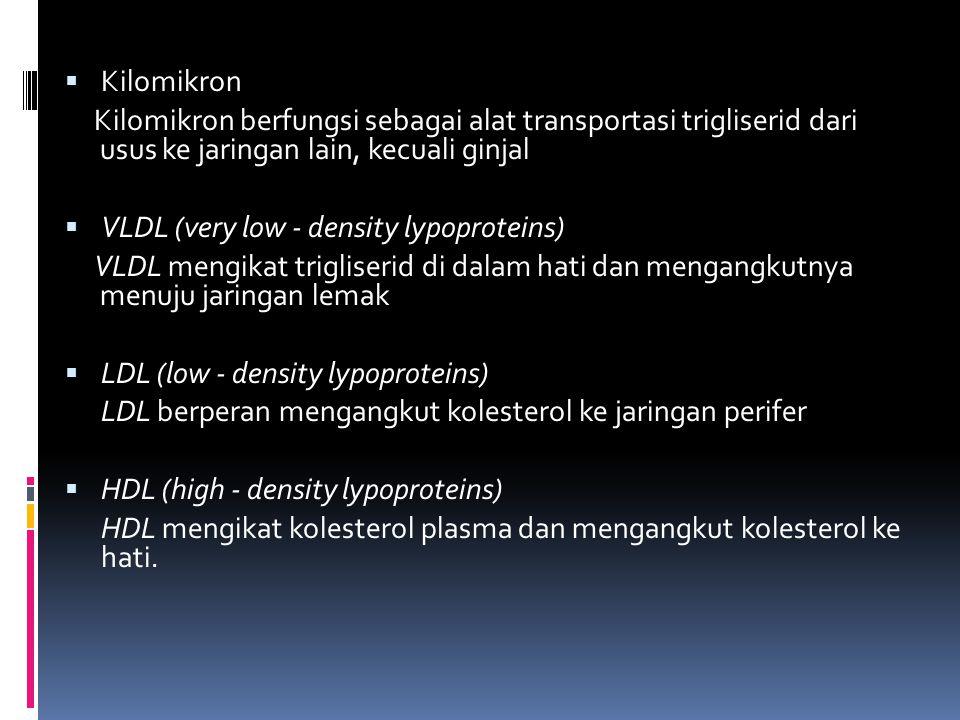  Kilomikron Kilomikron berfungsi sebagai alat transportasi trigliserid dari usus ke jaringan lain, kecuali ginjal  VLDL (very low - density lypoprot